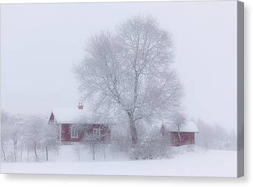Winter Idyll Canvas Print by Allan Wallberg