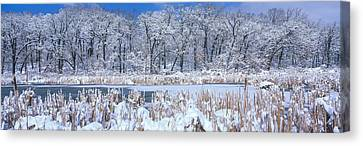Winter, Illinois, Usa Canvas Print by Panoramic Images