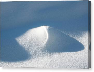 Winter In British Columbia Brings Canvas Print by Richard Wright