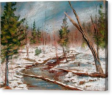 Winter In Canane Canvas Print by Bruce Schrader
