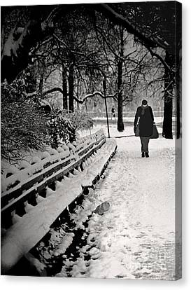 Winter In Central Park Canvas Print by Madeline Ellis