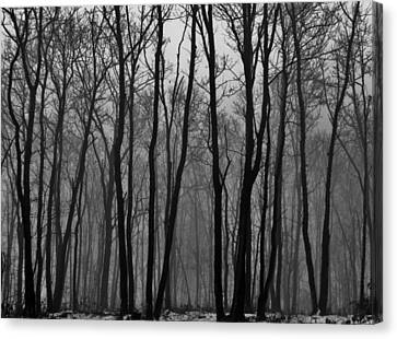 Winter In Pennsylvania Canvas Print by Benjamin Yeager