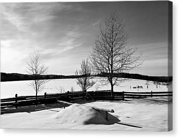 Winter In Roztocze Canvas Print by Tomasz Dziubinski