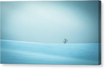 Winter In Solitude Canvas Print