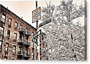 Winter In The Bronx Canvas Print