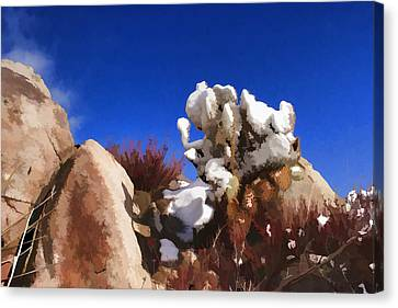 Winter In The Desert Canvas Print by Scott Campbell
