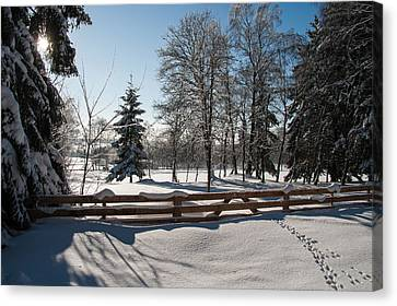 winter in the Harz area Canvas Print by Andreas Levi