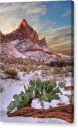 Winter In Zion National Park Utah Canvas Print by Utah Images