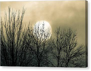 Moon Canvas Print - Winter Into Spring by Bob Orsillo