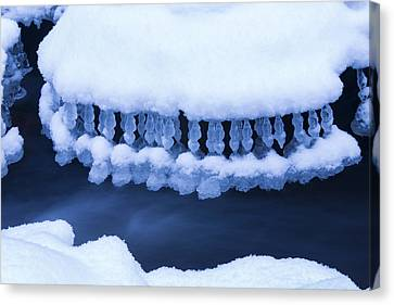 Winter Jewelry Canvas Print by Mircea Costina Photography