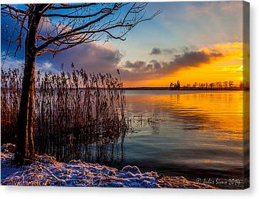 Winter Lake Sunset With A Tree Lighted In Red And Orange  Canvas Print by Julis Simo