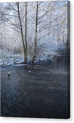 Winter Lake Canvas Print by Svetlana Sewell