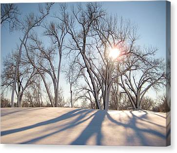Canvas Print featuring the photograph Winter Landscape by Alicia Knust