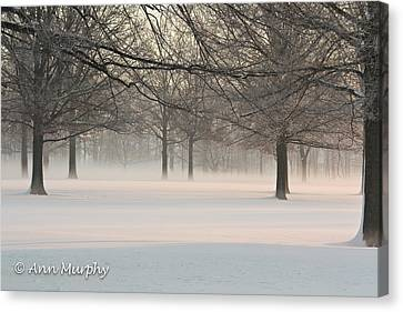 Canvas Print featuring the photograph Winter Landscape by Ann Murphy