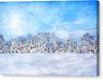 Winter Landscape Canvas Print by Darren Fisher