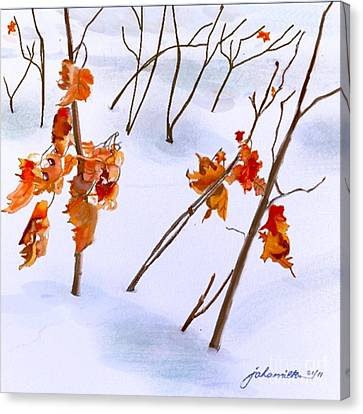 Winter Leaves Canvas Print by Joan A Hamilton