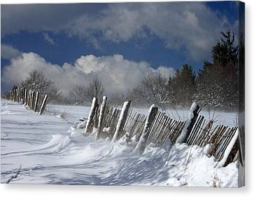 Winter Canvas Print by Lepercq Veronique