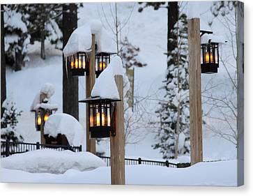 Winter Light Canvas Print by Denice Breaux
