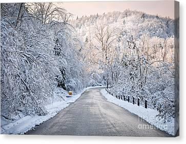 Winter Magic Canvas Print by Elena Elisseeva