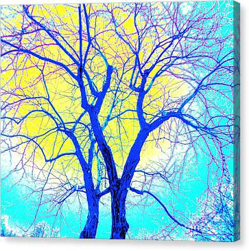 Winter Marriage Of Two Trees Canvas Print by Ann Johndro-Collins