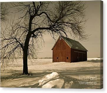 Winter Memory Canvas Print by Tim Good