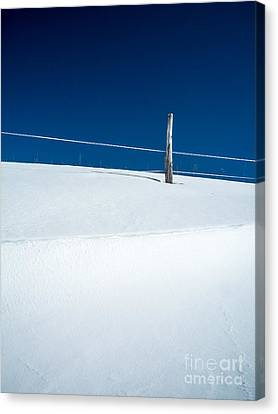 Winter Minimalism Canvas Print