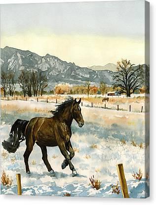 Winter Mood Canvas Print by Anne Gifford