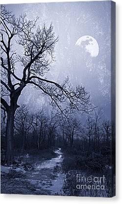 Gnarly Canvas Print - Winter Moonlight Blues by John Stephens