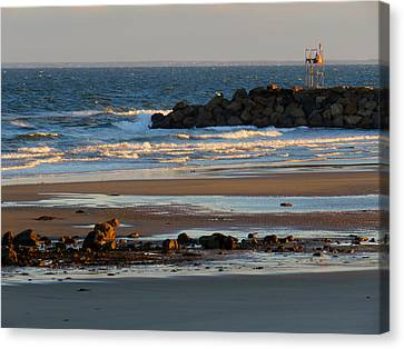 Winter Morning At Sesuit Harbor Canvas Print by Dianne Cowen