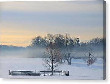 Winter Morning Fog Canvas Print