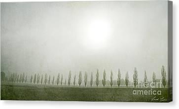 Winter Morning Londrigan 7 Canvas Print