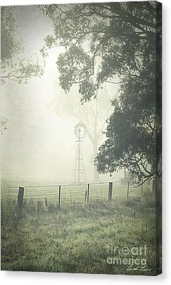 Winter Morning Londrigan 9 Canvas Print by Linda Lees