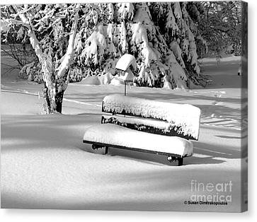 Canvas Print featuring the photograph Winter Morning by Susan  Dimitrakopoulos