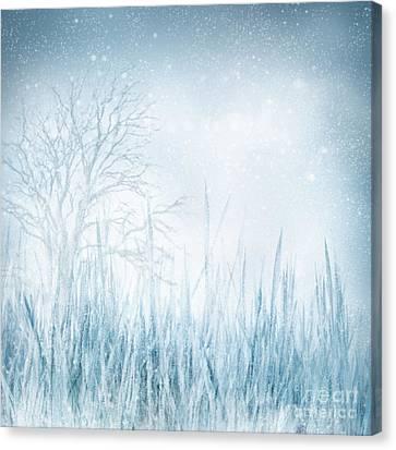 Winter Canvas Print by Mythja  Photography