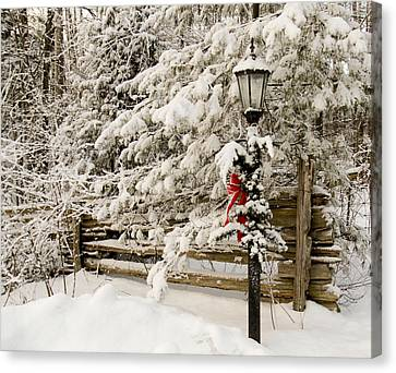 Winter Canvas Print by Nick Mares