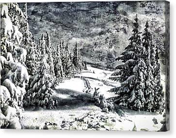 Winter Night Forest 7 Canvas Print by Yury Malkov