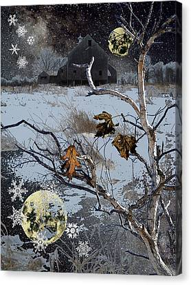 Winter Nights Canvas Print by Donna Lee Young