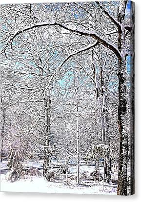 Winter On A Spring Day Canvas Print