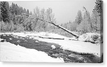 Winter On Grouse Creek Canvas Print by Randolph Fritz