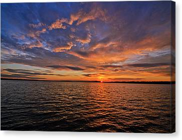 Winter On Lake Houston Canvas Print by Allen Biedrzycki