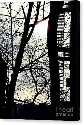 Winter On Overlook Terrace Canvas Print by Sarah Loft