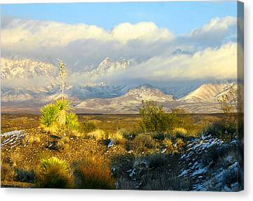 Winter In The Organ Mountains Canvas Print by Jack Pumphrey