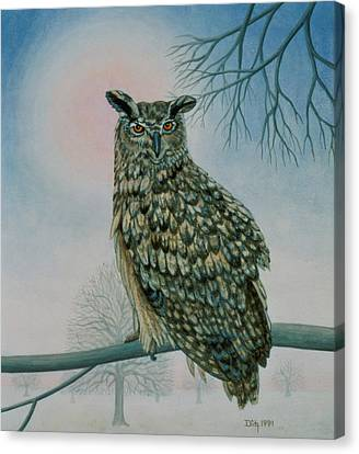 Winter Owl Canvas Print by Ditz