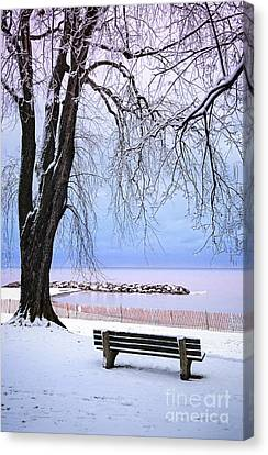 Park Benches Canvas Print - Winter Park In Toronto by Elena Elisseeva