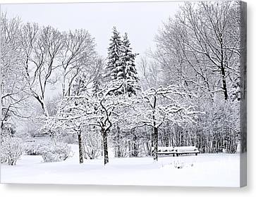 Winter Landscapes Canvas Print - Winter Park Landscape by Elena Elisseeva