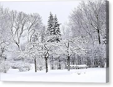 Winter Landscapes Canvas Print - Winter Park Landscape by Elena Elisseeva