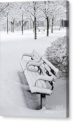 Winter Park With Benches Canvas Print