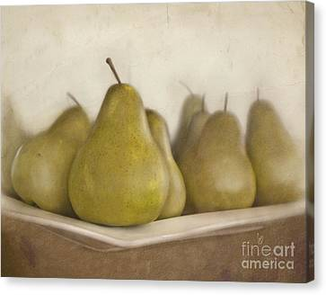 Winter Pears Canvas Print by Cindy Garber Iverson