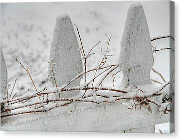 Winter Picket Fence Canvas Print