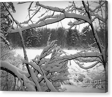 Canvas Print featuring the photograph Winter Pond by Kathi Mirto